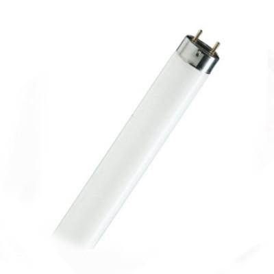 Лампа Camelion FT8 36 Вт/54