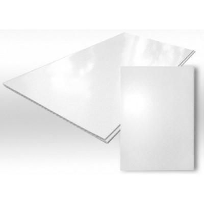 Панель ПВХ 2,7*0,25м Белый лак
